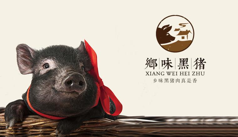 品牌建设与升级 | 乡味黑猪品牌LOGO设计