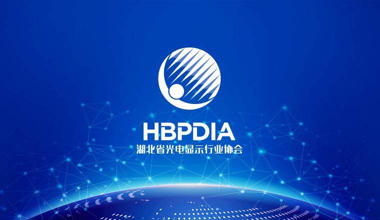 湖北省光电显示行业协会